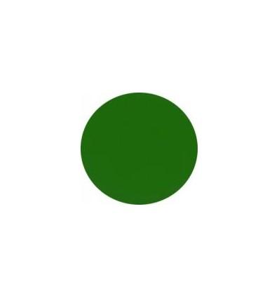 Puder akrylowy kolorowy 5 g średnia zieleń