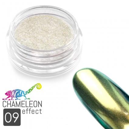 09. CHAMELEON EFFEKT